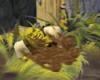 Shreki liug